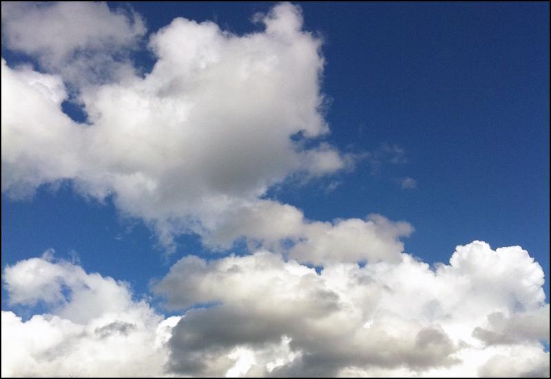 Bellevue Sky